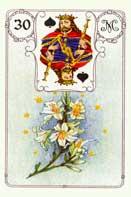 Символ королей франции
